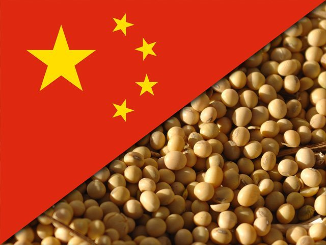 China buys 10 soybean ships a week from Brazil and cancels purchase in US ...