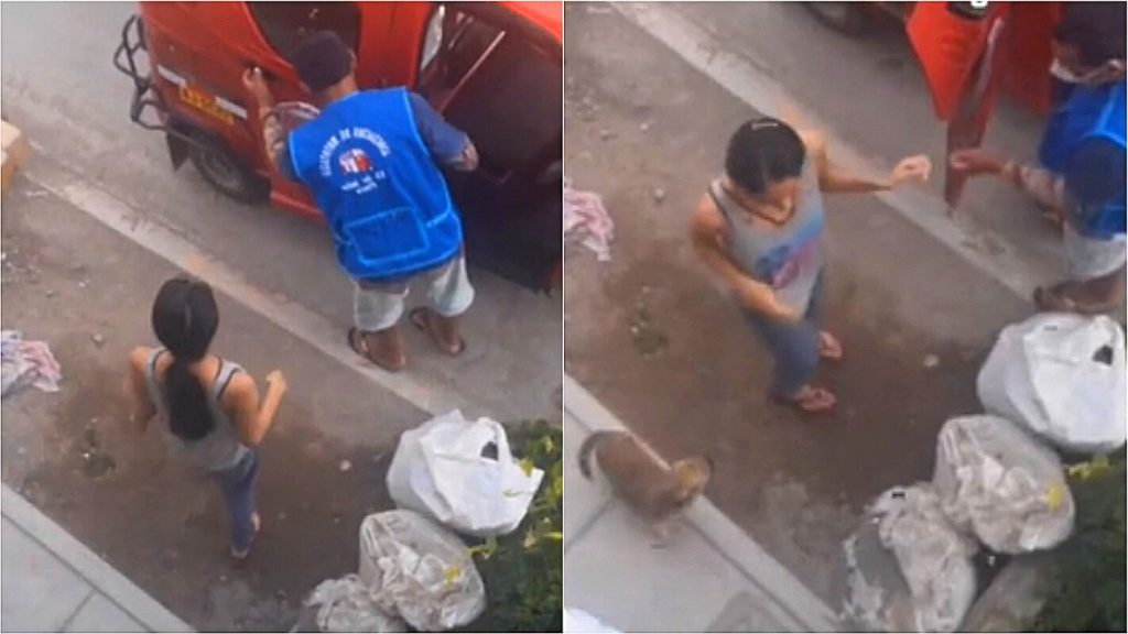 The dog returns home alone on a bicycle taxi after the owner forgot him at the market;  Video