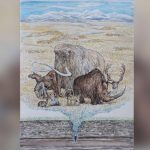 Mammoths and large Ice Age animals lived longer than previously thought