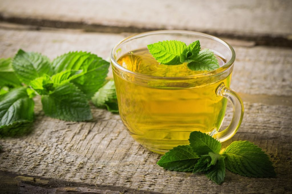 Mint tea for what?  Are you losing weight?  See how you do it |  feed